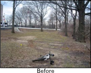 Highbridge Park Before